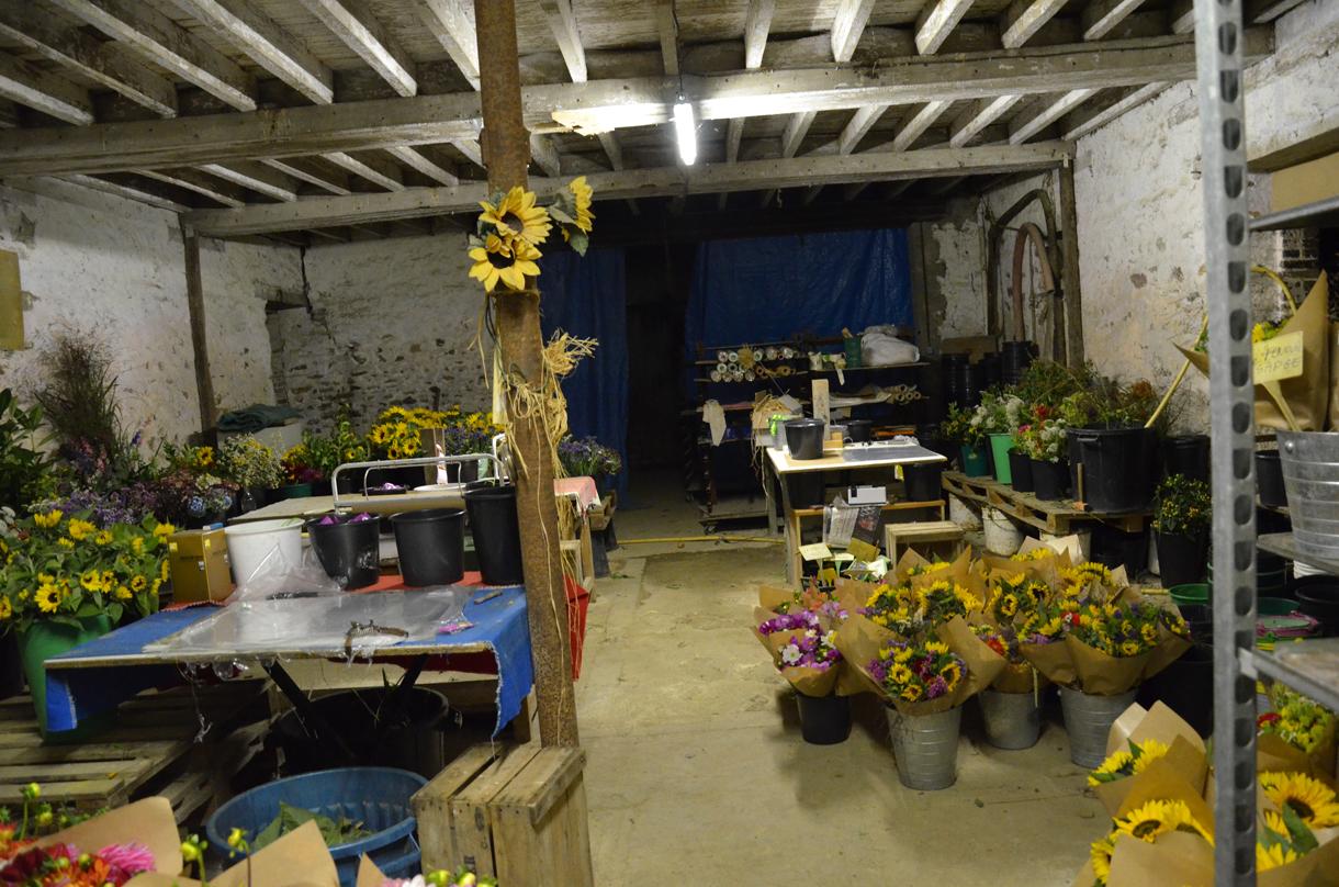 Atelier Bio Fleur de Soleil